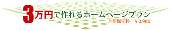3万円で作れるホームページプラン